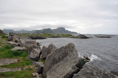 Norway: Whale Watching in Andenes