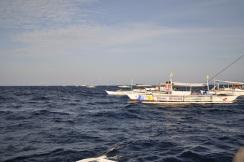 Bohol: I Wanna Take You To The Island