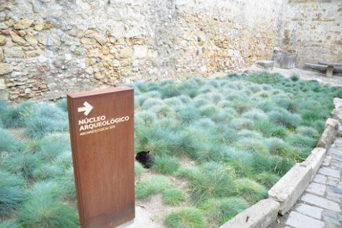 Cabo da Roca or Promontorium Magnum