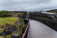 Day 12: Reykjavik, Whales and the Golden Circle