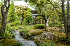 1df72-arashiyama-50