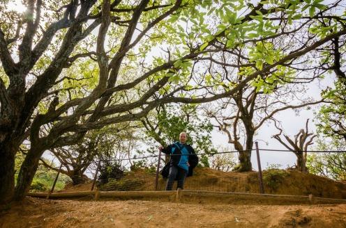 4bc9f-arashiyama-18