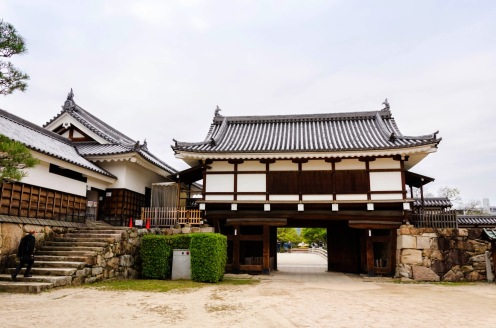e9e76-kagoshima2-35