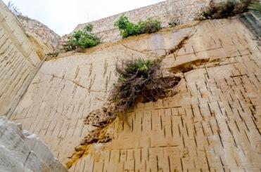 43ab5-limestone2bheritage-44