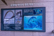 ee1db-daejeon-66
